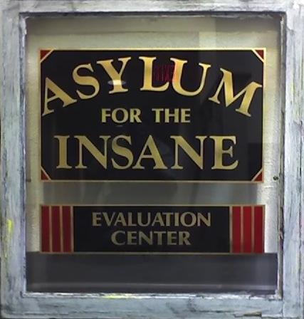 Asylum for the Insane by efawjedi