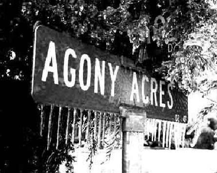 Agony Acres by efawjedi