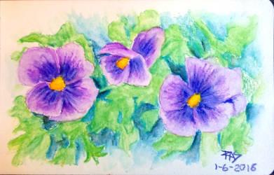 Violas by robertsloan2