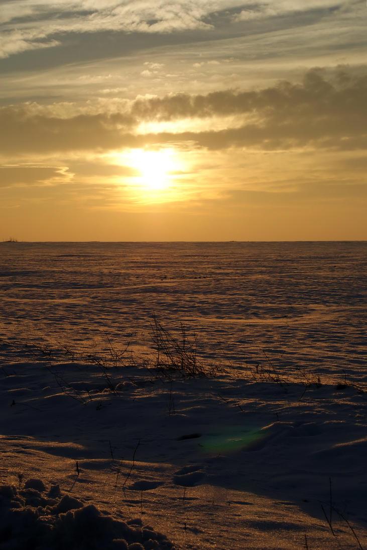 A winter dream by Biutz