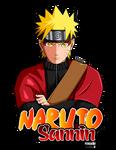 Naruto Shippuden Sannin/Sage Mode