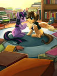 Commission 11 - Library