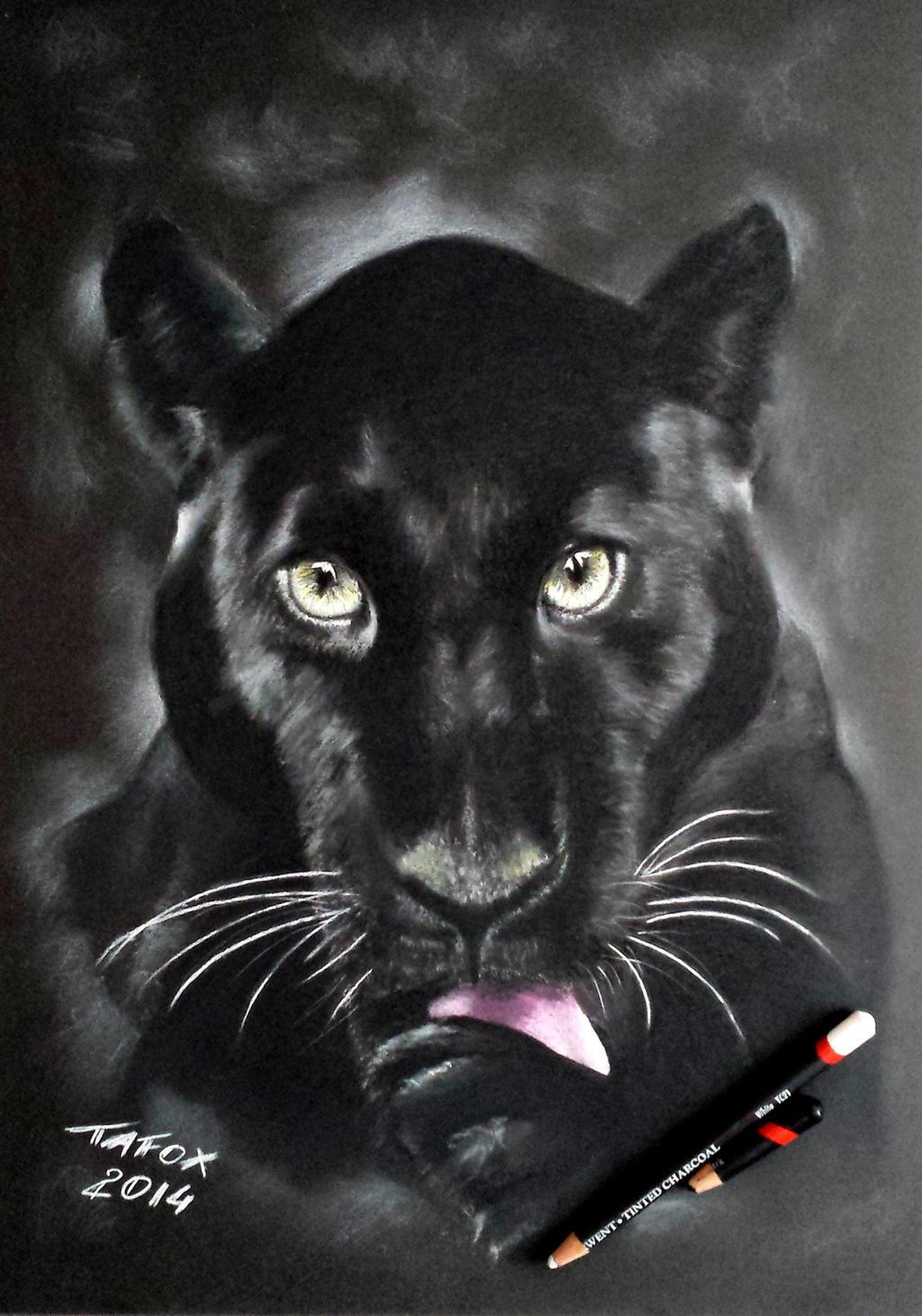 Пантера рисунки картинки