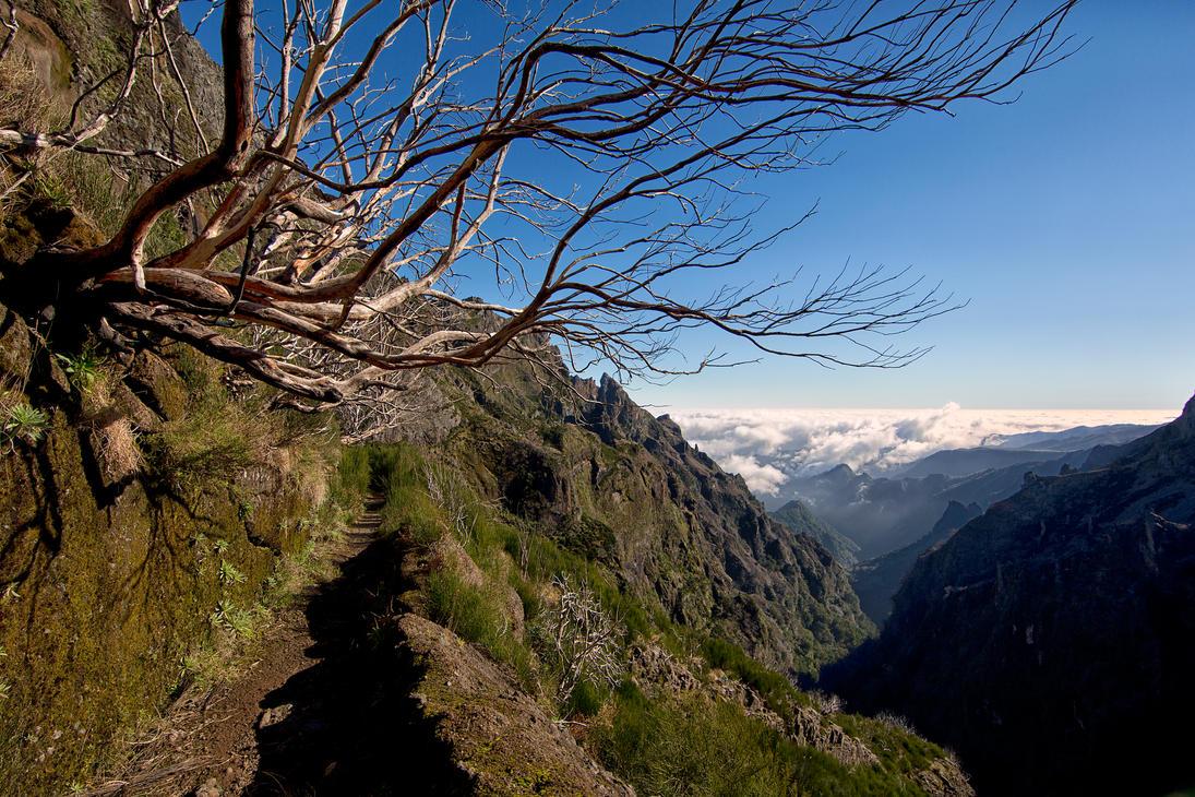 Forgotten trail by luethy