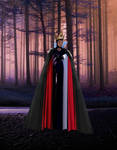 The Evil Queen....Through the Woods