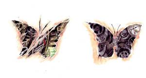 MechButterfly