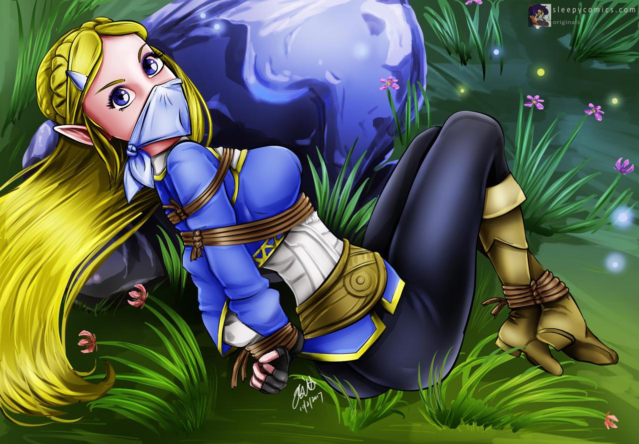 Princess Zelda Captured!
