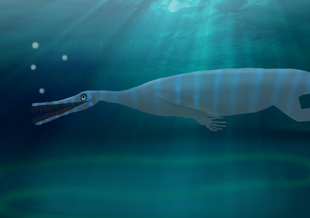 Mesosaurus tenuidens by NickBrown27
