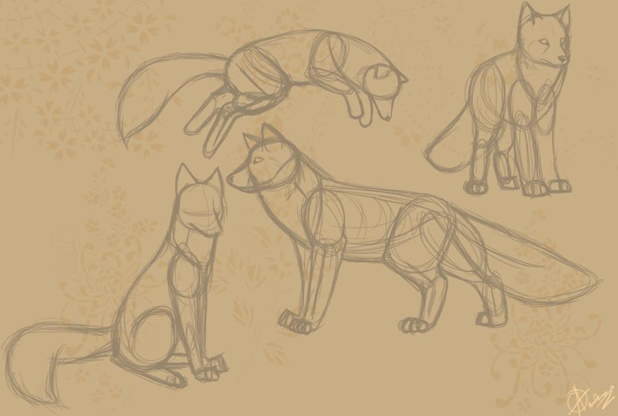 Fox Anatomy Sketches by Raoleza on DeviantArt