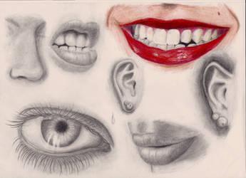 Face Study I by Odikay
