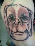falco tattoo falko
