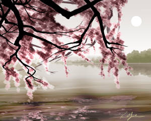blossoms on the lake