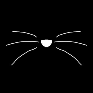 [OVERLAYS] Pic - Cat Whiskers by HasnaSone