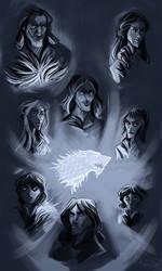 House Stark (study)