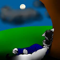 'The night sky...