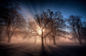 Misty sunrise by Zenabiz