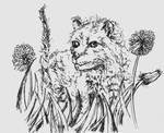 Kitten in the dandelions