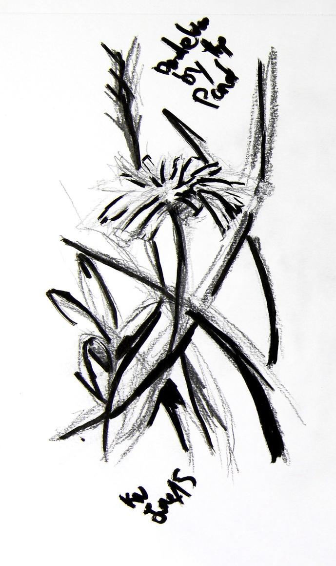 dandelion by LadyKylin