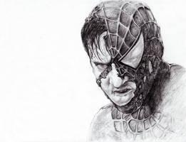 Battle Ravaged Spiderman by pgill