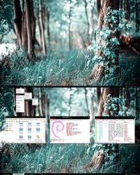 Debian screenshot 19.05.11
