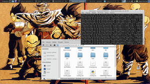 Debian testing + XFCE