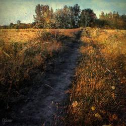 Field of Memories by ejohanne