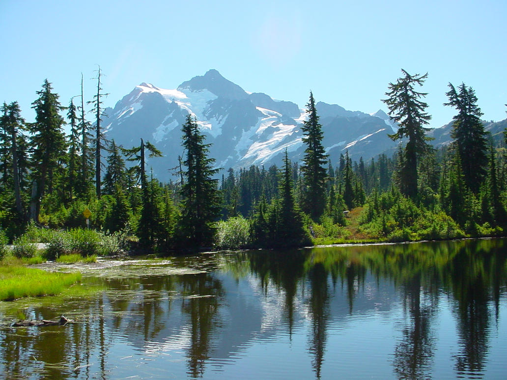 Mt. Baker on the Way by FreeTigress