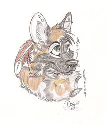 Painted wild dog by YouthxDiamonds