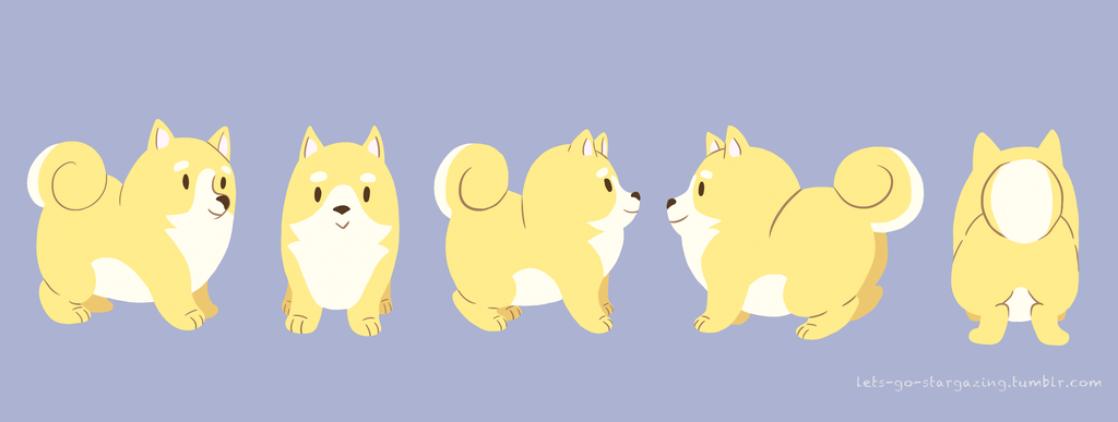 Shiba Inu Model Sheet By XxPonyPuffPrincessXx On DeviantArt