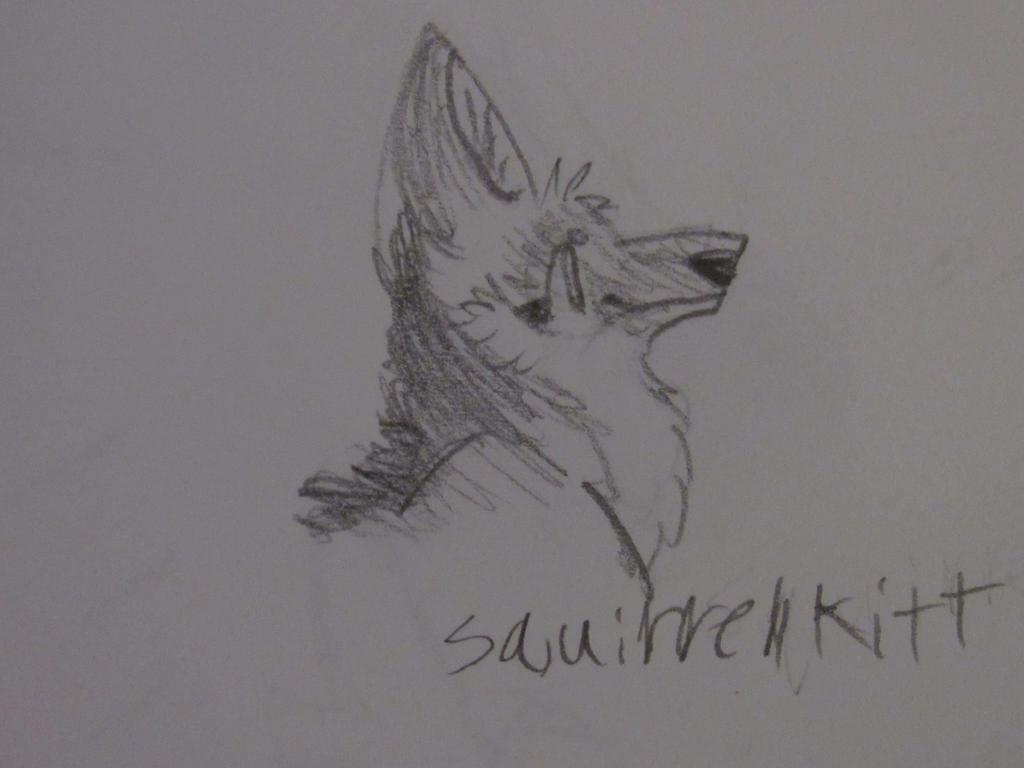 Maned Wolf Sketch By Squirrellkkitt On DeviantArt