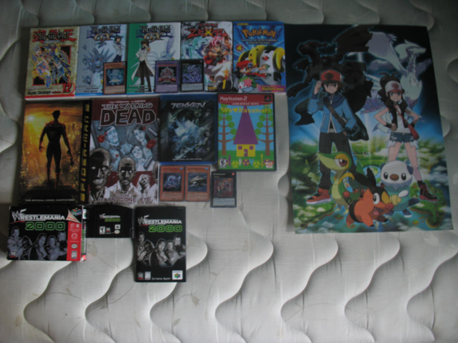 anime_north_2012___what_i_bought_by_juss