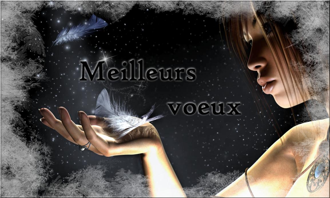 http://th07.deviantart.net/fs71/PRE/i/2013/012/5/c/meilleurs_voeux_by_manduleen-d5qjmx9.png