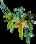 VICTORIAN floral 1_quaddles