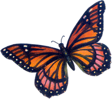 VICTORIAN butterfly 7_quaddles by quaddles