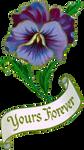 VICTORIAN flower 1_quaddles by quaddles