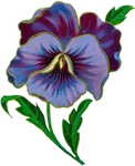 VICTORIAN flower 2_quaddles