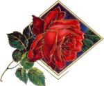 VICTORIAN flower 3_quaddles