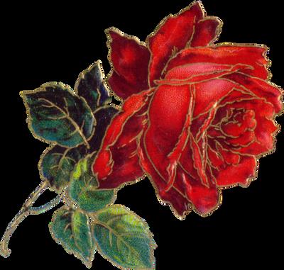 VICTORIAN flower 4_quaddles by quaddles