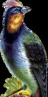 Victorian bird 14_quaddles