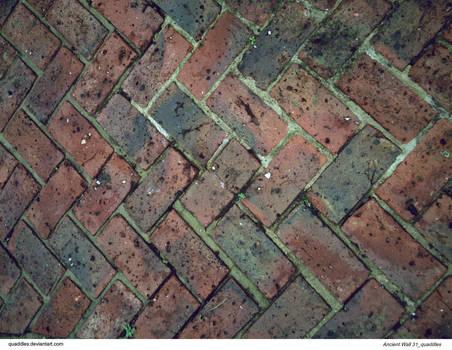 Ancient Wall 31_quaddles