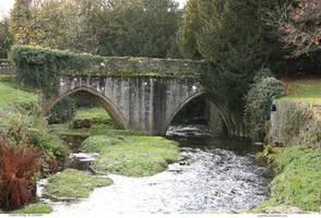 English BRIDGE 32_quaddles