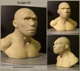 Tautavel man (Homo heidelbergensis)