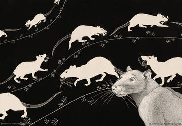 Victorious march (Rats)