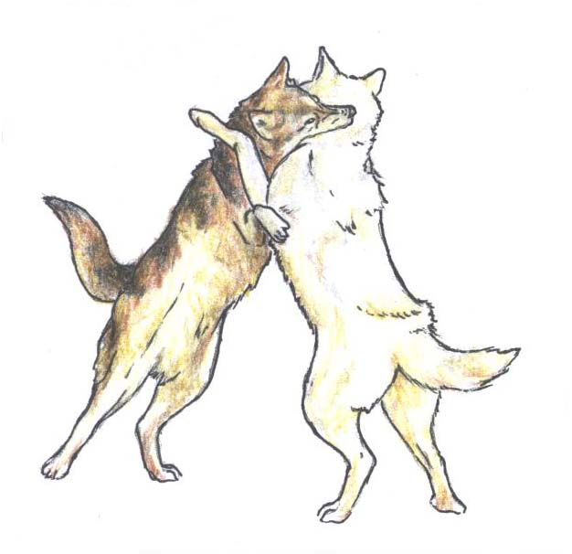 Drawings Wolves Fighting PicturesFighting Wolf Drawings