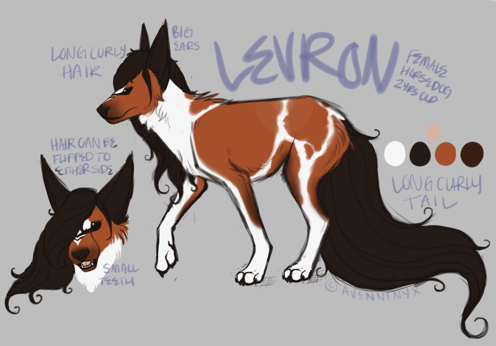 levron reference sheet