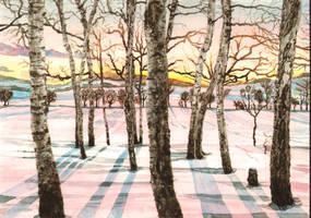 Winter twilight by aqualumen