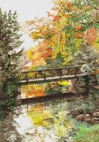 Bridge by aqualumen