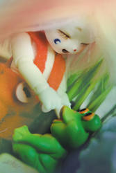 Magical Forest Frogs VI by AidaOtaku-BJD