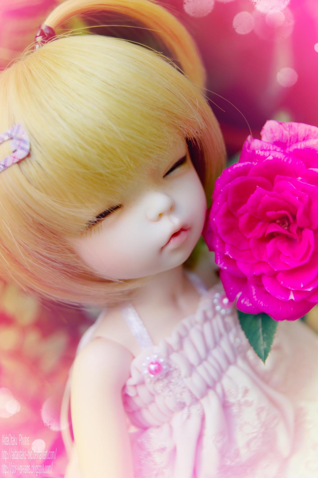 Sleeping rose by AidaOtaku-BJD