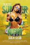 Summer Flyer by n2n44